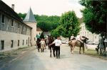 Clairvaux-cheval-guy-routes-terroir